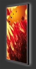 Designleuchtbild XL Hochformat Motiv 551